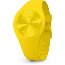 Ice Watch  Colour- Citrus-Small 017 908